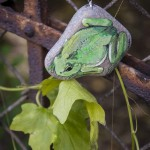 naszyjnik z żabą, naszyjnik z rzekotką