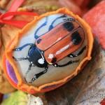 moszenica wierzbówka