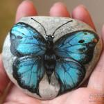 motyl malowany, prepona meander