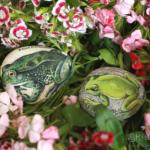 Żaba śmieszka (Rana ridibunda) i rzekotka